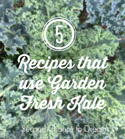 Second Chance to Dream: 5 Recipes that use garden fresh kale #kale #recipe