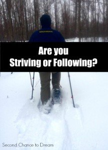 Are you Striving or Following??
