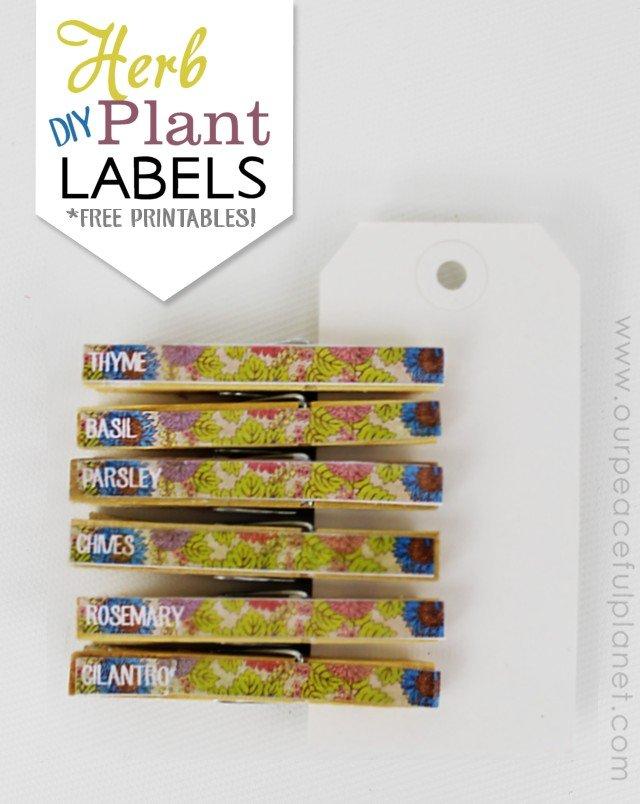 Herb Plant Lables DIY