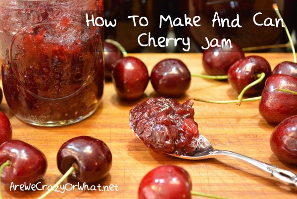 How To Make And Can Cherry Jam~AreWeCrazyOrWhat.net