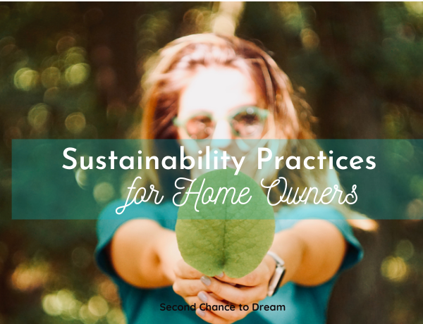Second Chance to Dream: Sustainability Practices for Home Owners